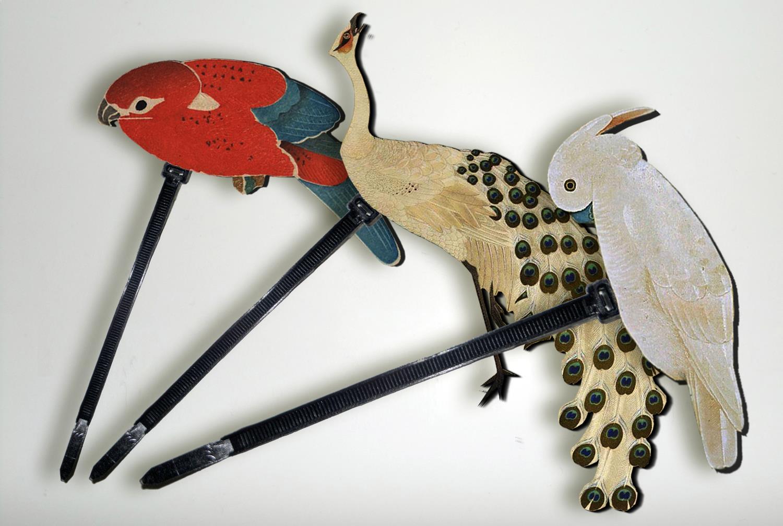 Bridas para atar ramas de plantas o arboles decorandolos con pájaros tropicales extraidos de los cuadros de ito jacuchu. Diseño industrial.