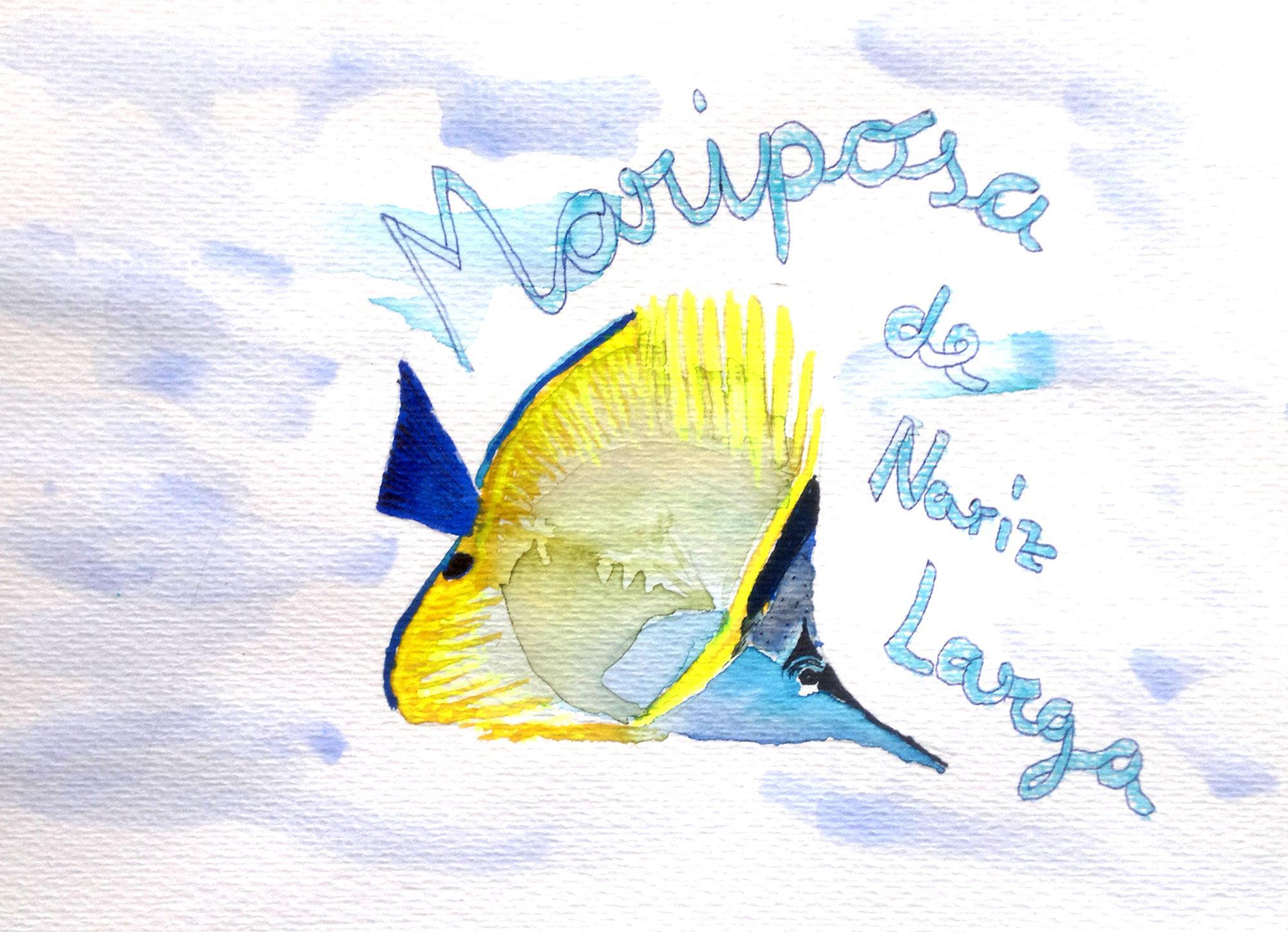 pez02-mariposa